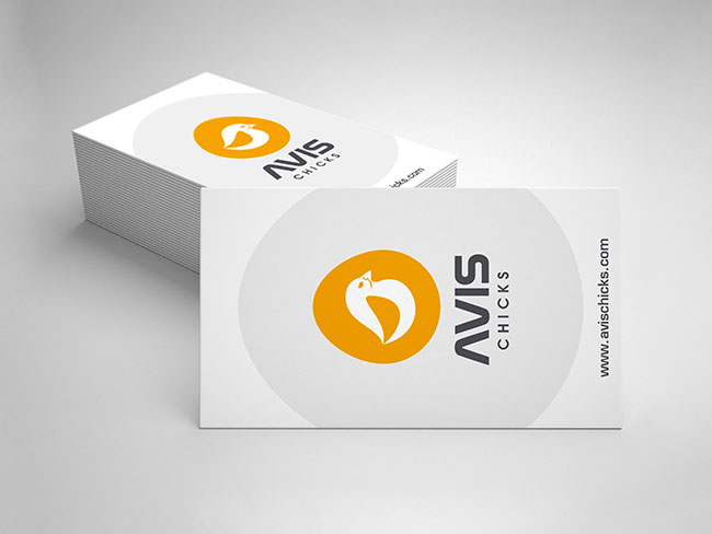 avis-chicks-Vancouver-brand-design-Vancouver-graphic-design-by-mapleweb-canada-busines-card-light-grey-background-thumbnail