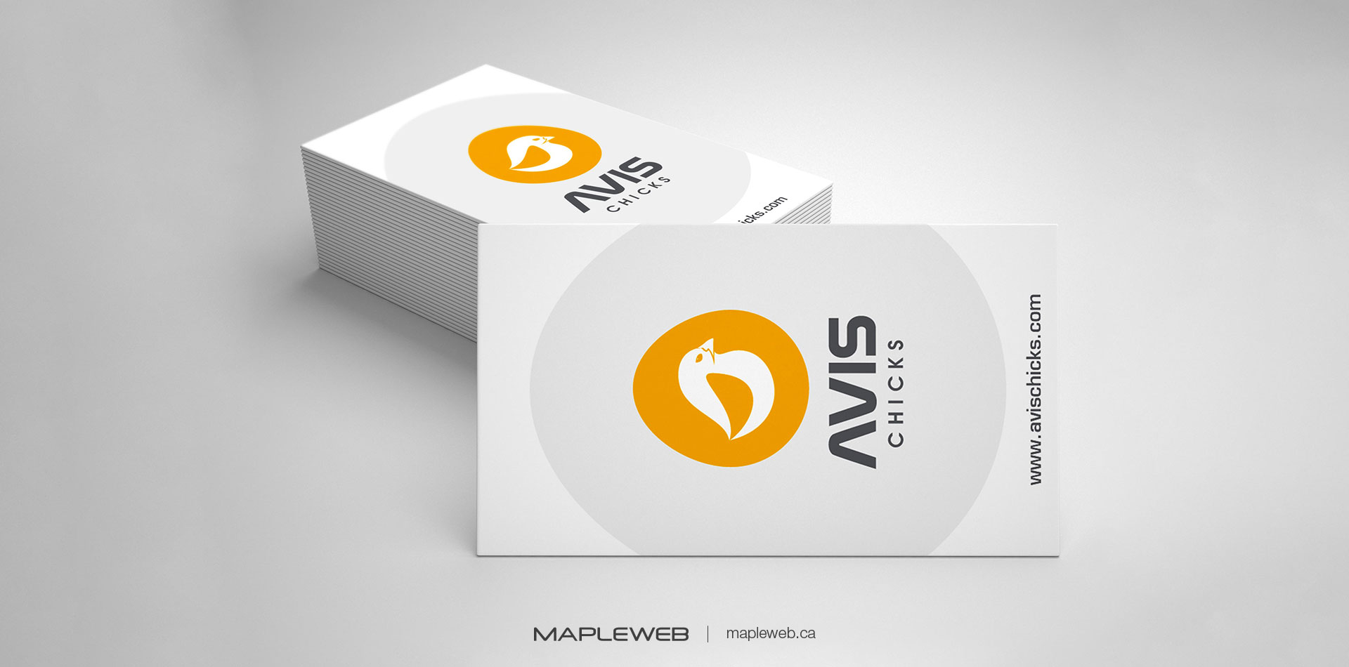 avis-chicks-Vancouver-brand-design-Vancouver-graphic-design-by-mapleweb-canada-business-card-lightgrey-background-mock
