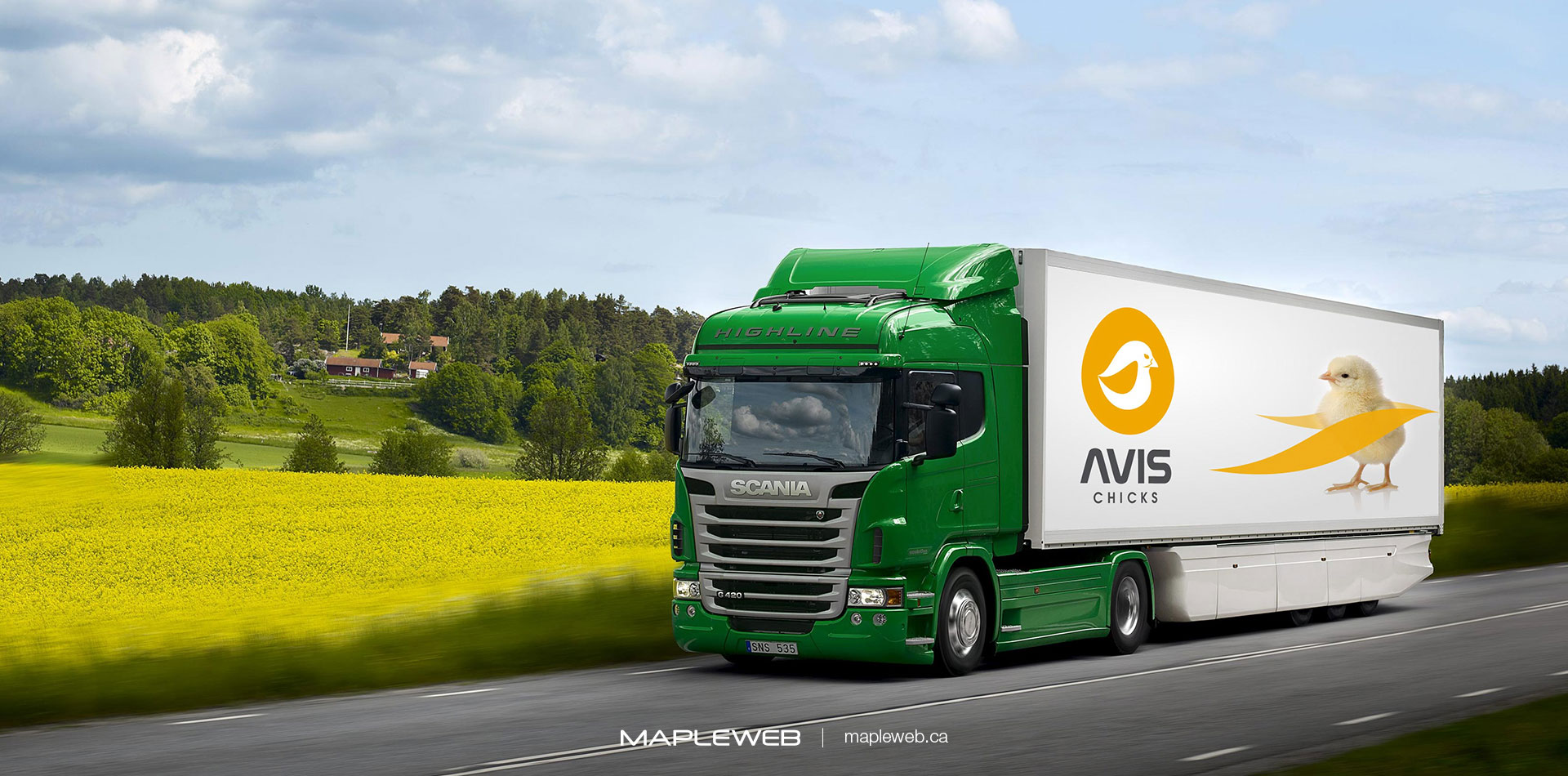 avis-chicks-Vancouver-brand-design-Vancouver-graphic-design-by-mapleweb-canada-green-truck-with-greenery-scene