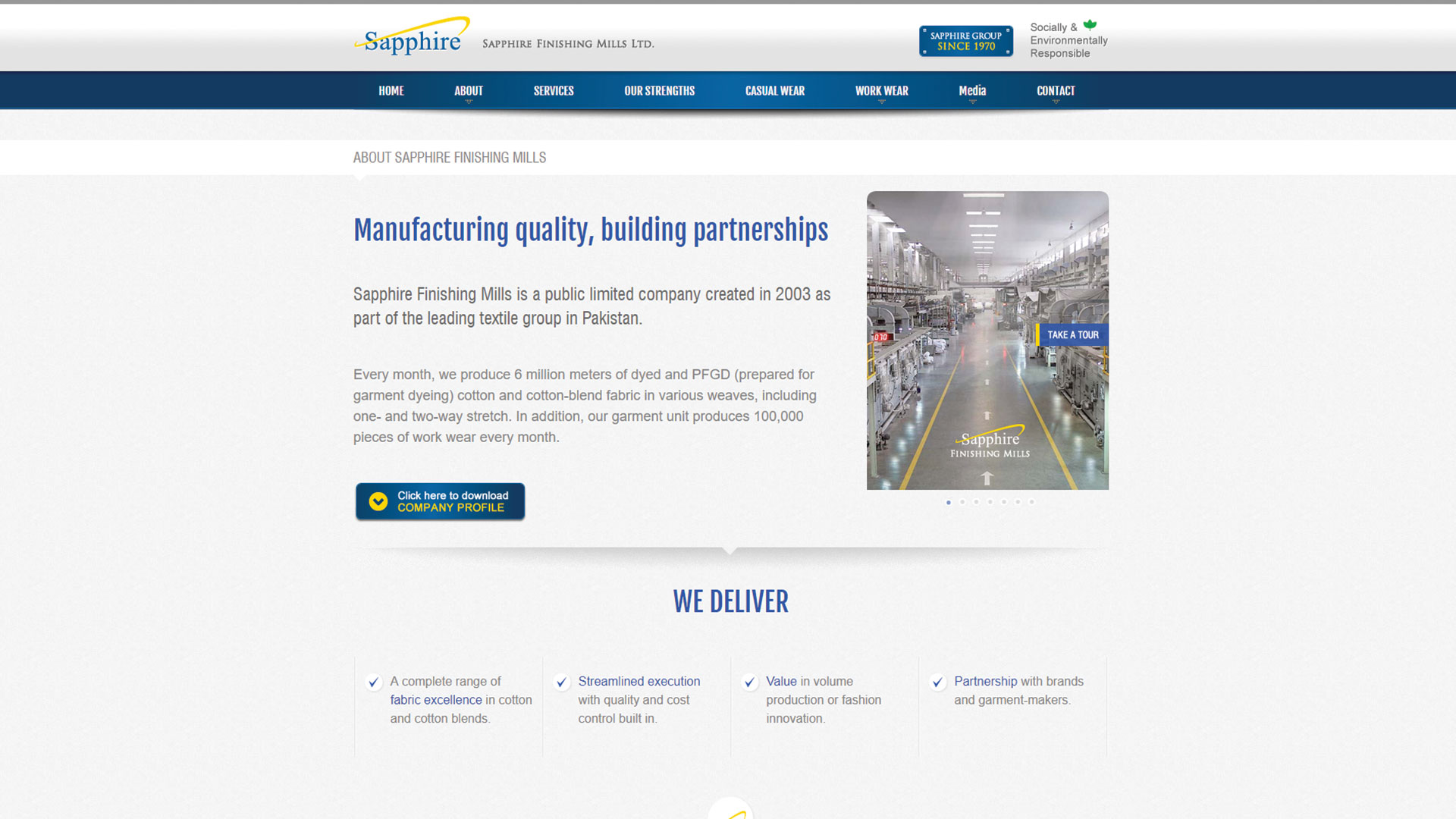 sapphire-Vancouver-web-design-Vancouver-web-development-by-mapleweb-canada-about-page