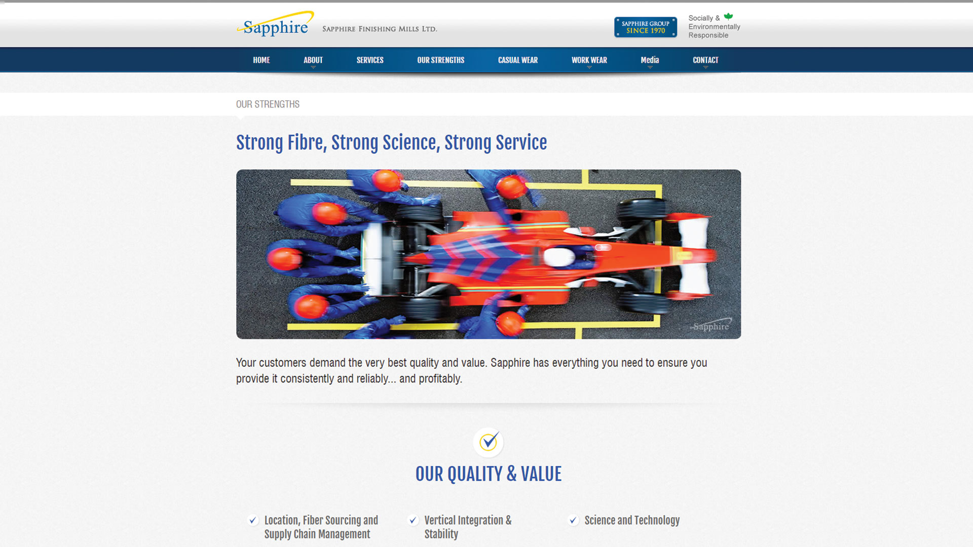 sapphire-Vancouver-web-design-Vancouver-web-development-by-mapleweb-canada-our-strength-page